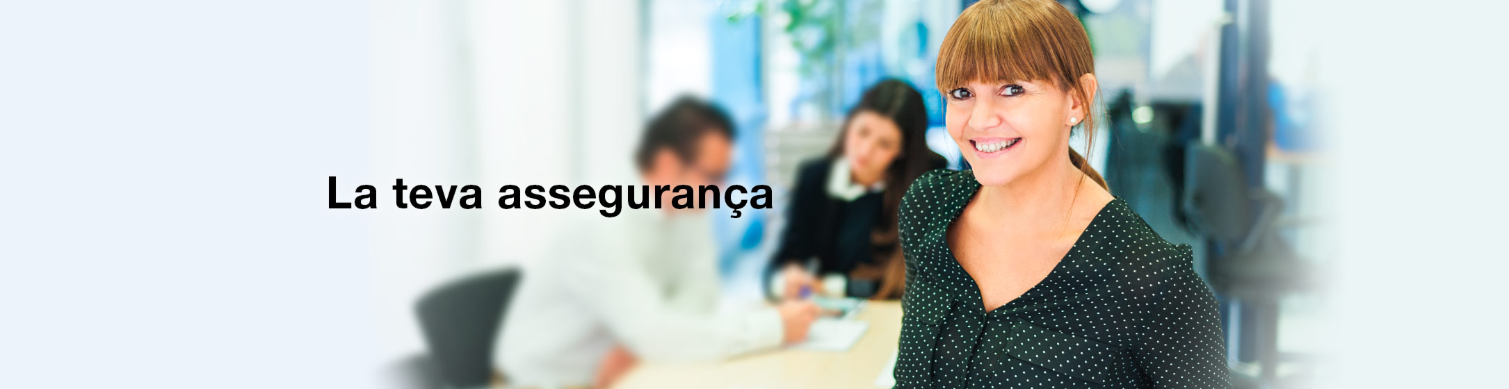 ERSM Insurance Brokers
